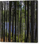 The Hidden Lake Canvas Print