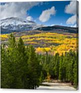 The High Road Canvas Print