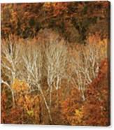 The Hills In Autumn Canvas Print