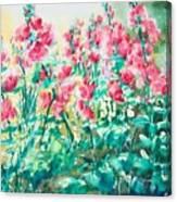 The Hollyhock Field Canvas Print
