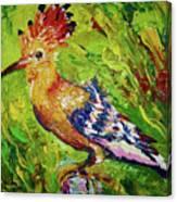 The Hoopoe Canvas Print