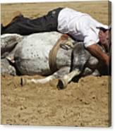 The Horse Whisperer Canvas Print