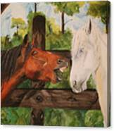 The Horse Whisperers Canvas Print