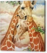 The Hug - Giraffes Canvas Print
