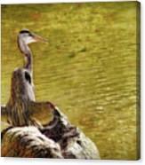 The Hunter Canvas Print