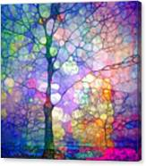 The Imagination Of Trees Canvas Print