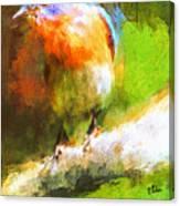 The Impressive Bluebird Canvas Print