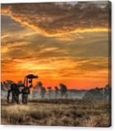 The Iron Horse 517 Sunrise Canvas Print