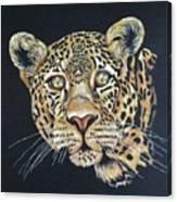 The Jaguar - Acrylic Painting Canvas Print