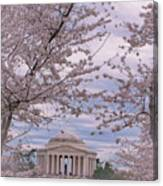 The Jefferson Memorial Attracts Large Crowds At The Cherry Blossom Festival Canvas Print