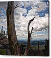 The Journey To Harney Peak Canvas Print