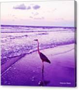 The Joy Of Ocean And Bird 2 Canvas Print