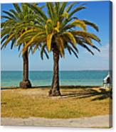 The Joy Of Sea And Palms Canvas Print