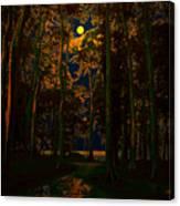 The Jungle Moon Canvas Print