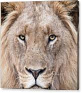 The King Canvas Print