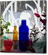 The Kitchen Window Sill Canvas Print