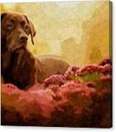 The Labrador Canvas Print