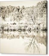 The Lake #47 Canvas Print