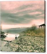The Lake Walker Canvas Print