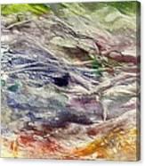 The Last Snow Canvas Print