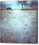 The Last Snowfall Canvas Print