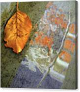 The Leaf And The Reflections Canvas Print