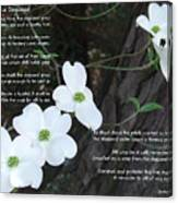 The Legend Of The Dogwood Canvas Print