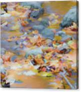The Lightness of Autumn Canvas Print