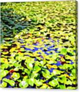 The Lily Pond #2 Canvas Print