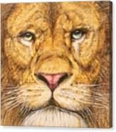The Lion Roar Of Freedom Canvas Print