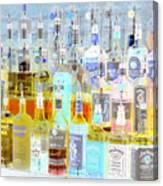The Liquor Cabinet Canvas Print