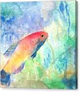 The Little Fish Canvas Print