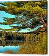 The Little Known Cary Lake Canvas Print