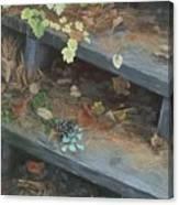 The Little Pine Cone Canvas Print