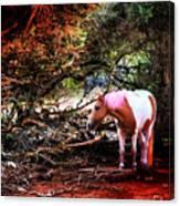 The Little Pink Unicorn By Pedro Cardona Canvas Print