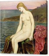 The Little Sea Maid  Canvas Print