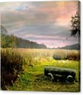 The Log Bench Canvas Print