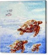 The Loggerheads Catch The Currents Canvas Print