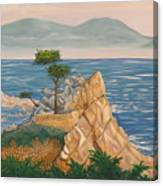 The Lone Cypress Tree Canvas Print