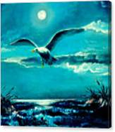 The Lone Scavenger Canvas Print
