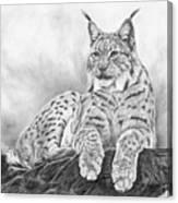 The Lynx 2017 Version Canvas Print