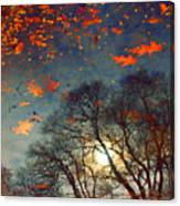 The Magic Puddle Canvas Print