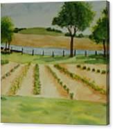 The Mangan Farm  Canvas Print