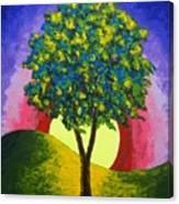 The Maple Tree Canvas Print