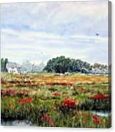 The Marsh In Bloom Canvas Print