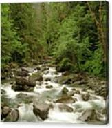 The Miller River  Canvas Print