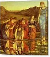 The Mirror Of Venus  Canvas Print