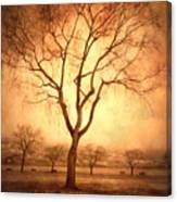 The Mother Tree Canvas Print