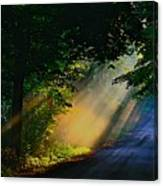 The Mourning Sun Canvas Print