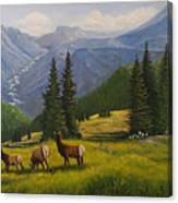 The Moyie Drop Canvas Print